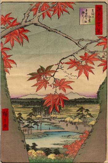 The Maple Trees at Mama, Tekona Shrine and Tsugi Bridge